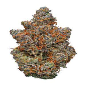 Gelato Cannabis Strain